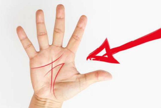 Chữ M trong lòng bàn tay là điều rất tốt