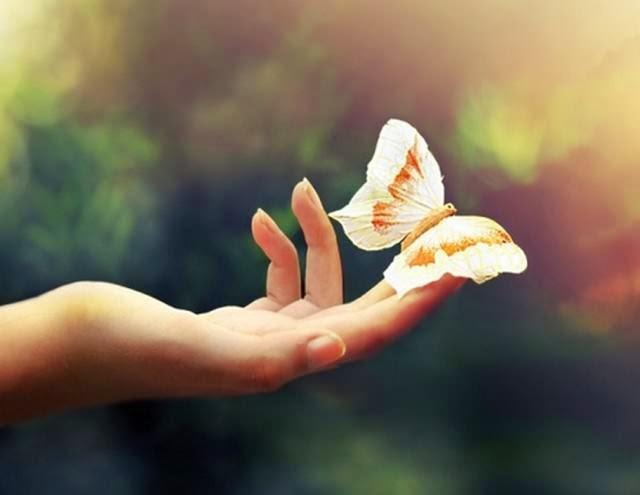 sống đẹp, triết lý hay về cuộc đời