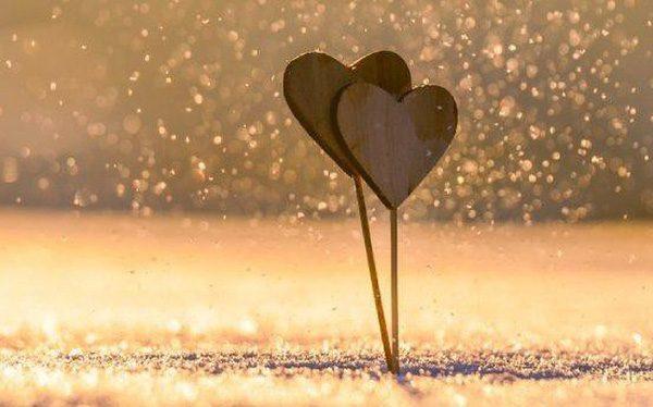 khúc giao mùa tình yêu, thơ bốn mùa xuân hạ thu đông
