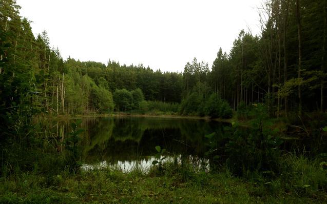 Hồ nước